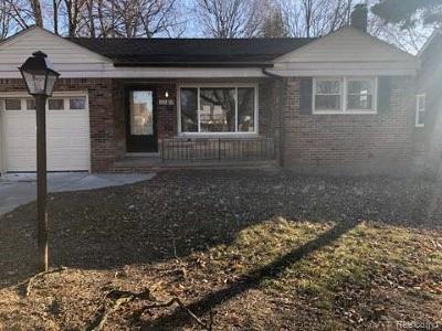 Wayne County Single Family Home For Sale: 20424 Damman Street N