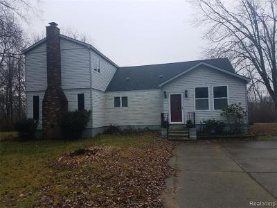 Canton, Canton Twp Single Family Home For Sale: 601 N Lotz Road