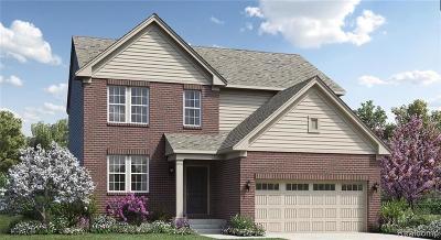 Ann Arbor Single Family Home For Sale: 6383 N Trailwoods Drive