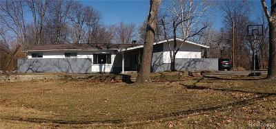 Clinton Twp Single Family Home For Sale: 15705 Millar Road