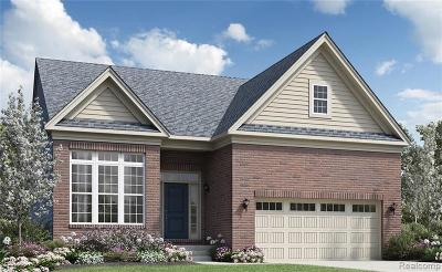 Ann Arbor Single Family Home For Sale: 6482 S Trailwoods Drive