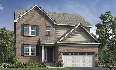 Ann Arbor Single Family Home For Sale: 6460 S Trailwoods Drive