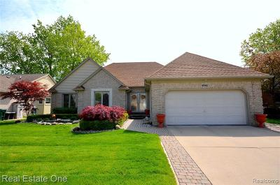 Macomb Twp Single Family Home For Sale: 47062 Stony Brook Dr