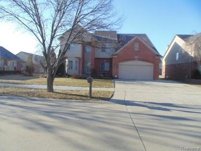 Clinton Twp Single Family Home For Sale: 17314 Puritan Drive