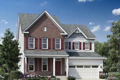 Ann Arbor Single Family Home For Sale: 6380 N Trailwoods Drive