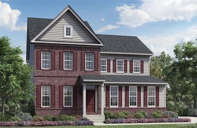 Ann Arbor Single Family Home For Sale: 6359 N Trailwoods Drive