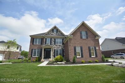 Novi Single Family Home For Sale: 24830 Acorn Trail
