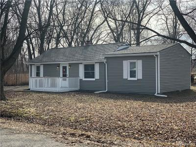 Romulus Single Family Home For Sale: 6080 Biddle Street