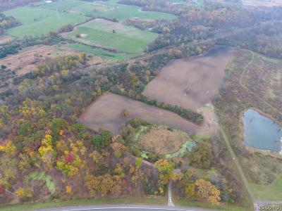 Residential Lots & Land For Sale: S Lapeer Road