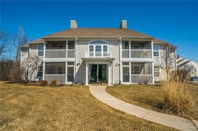 Ann Arbor, Scio, Ann Arbor-scio, Scio, Scio Township, Scio Twp Rental For Rent: 1220 Joyce Lane