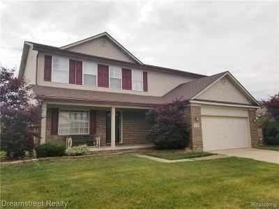 Brownstown Twp Single Family Home For Sale: 17293 Michigan Heights Drive