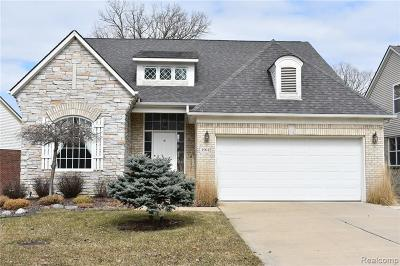 NORTHVILLE Single Family Home For Sale: 49642 S Glacier