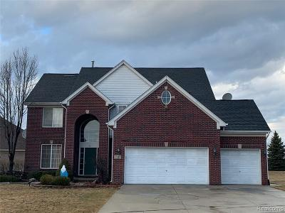 Macomb County Single Family Home For Sale: 18413 Swan Court