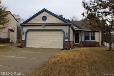 Single Family Home For Sale: 2528 Bonita Drive