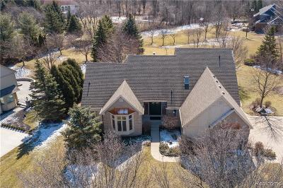 Plymouth Twp MI Single Family Home For Sale: $525,000