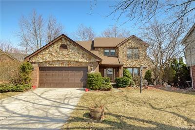 Canton, Canton Twp Single Family Home For Sale: 42166 Chase Court