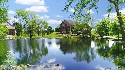 Novi Single Family Home For Sale: 49551 Deer Run