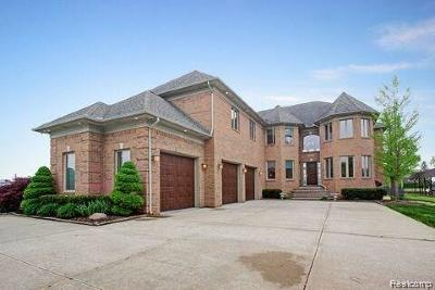 Chesterfield Twp Single Family Home For Sale: 48630 Home Drive
