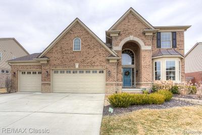 Novi Single Family Home For Sale: 27622 Estrada Ln