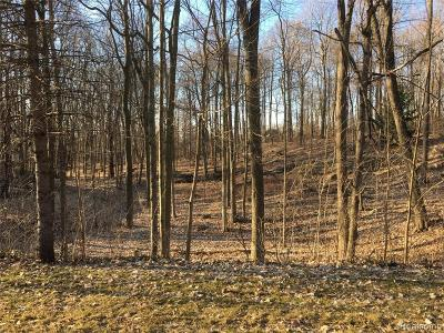Northville Residential Lots & Land For Sale: 398 Maplewood Street