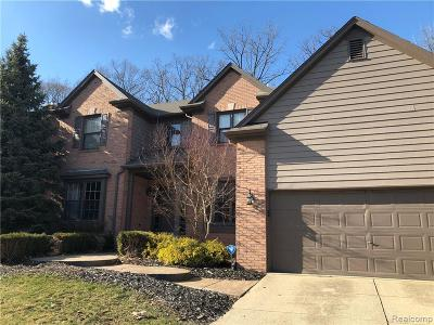Rochester Hills Single Family Home For Sale: 716 Lake Ridge Road