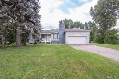 Romulus Single Family Home For Sale: 38735 Ecorse Road