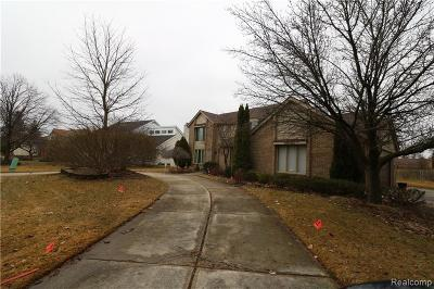 West Bloomfield, West Bloomfield Twp Single Family Home For Sale: 4905 Fairview Court