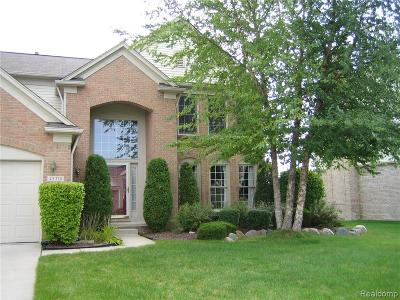 Canton, Canton Twp Single Family Home For Sale: 45374 Seabrook Drive