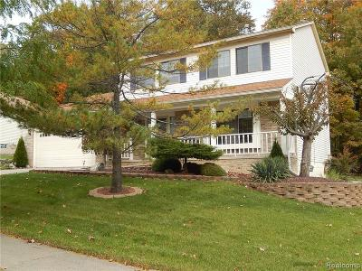 Novi Single Family Home For Sale: 45722 Cider Mill Rd