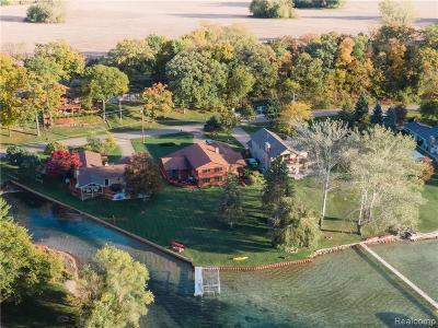 Fenton MI Single Family Home For Sale: $724,900