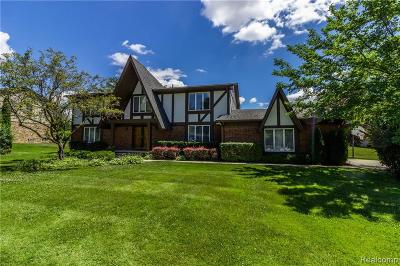 West Bloomfield Twp Single Family Home For Sale: 4229 Sedgemoor Lane