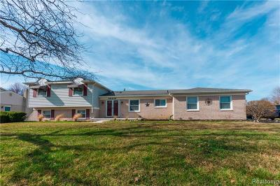 Livonia Single Family Home For Sale: 35406 Brookview Drive