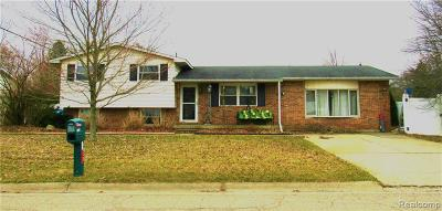 Genesee Twp Single Family Home For Sale: 5012 Berneda Drive