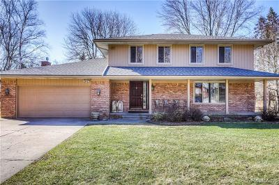 Oakland Twp Single Family Home For Sale: 379 Ridgewood Road