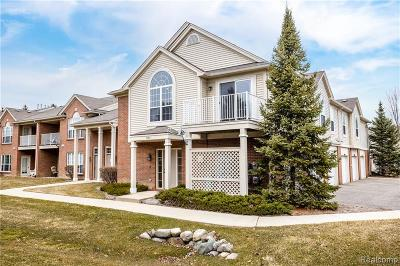 Commerce Twp Condo/Townhouse For Sale: 30211 Chesapeake Circle