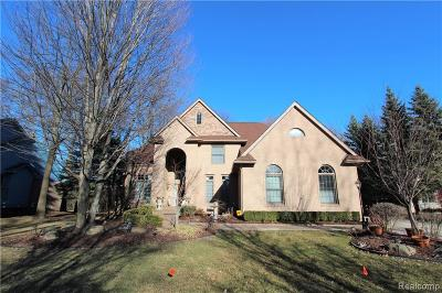 West Bloomfield, West Bloomfield Twp Single Family Home For Sale: 4695 S Ridge Drive