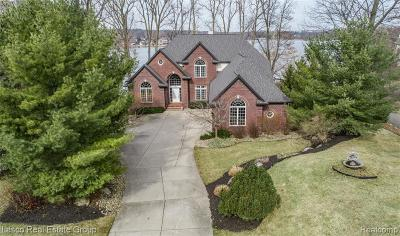 Fenton MI Single Family Home For Sale: $850,000