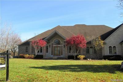Oakland Twp MI Single Family Home For Sale: $899,900