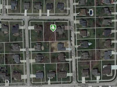 Residential Lots & Land For Sale: 9661 David Lane