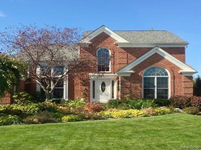 Rochester Hills Single Family Home For Sale: 677 Augusta Drive