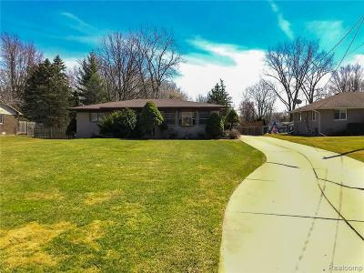 Chesterfield Twp Single Family Home For Sale: 31326 Sikon Street