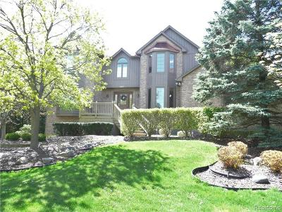 Novi Single Family Home For Sale: 22075 Worcester Drive