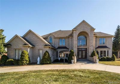 Shelby Twp Single Family Home For Sale: 13676 Timberwyck Drive