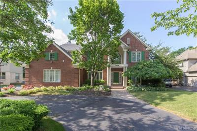 West Bloomfield Twp Single Family Home For Sale: 5874 Orchard Woods Drive