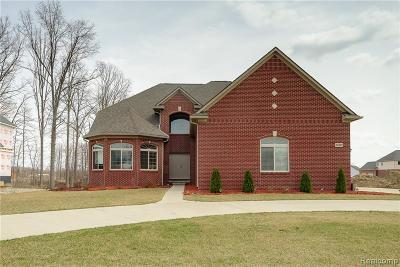 Huron Twp Single Family Home For Sale: 24099 Deerhawk Drive