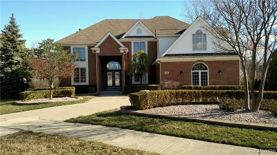 West Bloomfield Twp Single Family Home For Sale: 6958 Golden Court Court