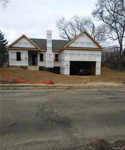 Pontiac Single Family Home For Sale: 396 Voorheis St