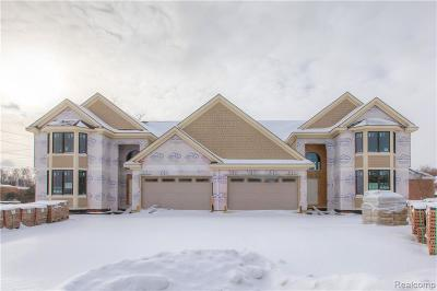 Northville Condo/Townhouse For Sale: 20202 Beacon Way #6