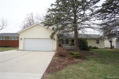 Romulus Single Family Home For Sale: 15732 S Huron River Drive