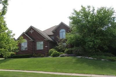 Canton, Plymouth Single Family Home For Sale: 13811 Burning Tree Ln